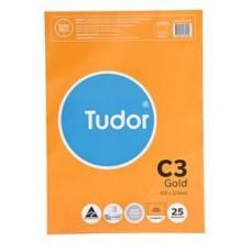 Tudor C3 Kraft Envelopes Pkt 25